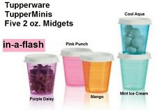 Tupperware SET OF 5 TUPPER MINIS 2 oz Small Little Sheer Container Midgets FIVE