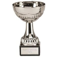 """Stirling3 Silver Cup  Multi Award Trophy Award"""