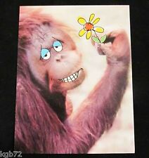 Leanin Tree Love Greeting Card Monkey Around Multi Color Notions Series P27