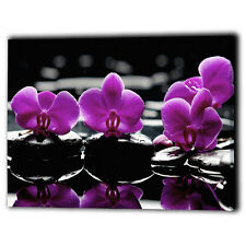 Purple Orchids Canvas Framed - Flower & Black Spa Stones - Wall Art Print Gifts