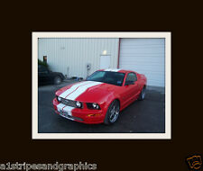 "2005 06 07  08 09 2010 MUSTANG 10"" Twin Rally Stripe Set Stripes Decals Graphics"