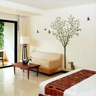 Stylish Tree Birds and Cat Wall Art Stickers, Wall Decal, Wall Stickers - PD520