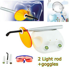 SILVER Dental Caries Detector LED curing Light Lamp Decayed tooth Finder+2 Tips