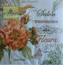 *CYPRESS HOME Set of 40 Cocktail Beverage Paper Napkins ~ Floral~Butterfly~Bird