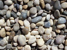 30 lbs Multi-Color Polished River Rock Pebble Stone 2-3 inch