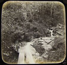 Glass Magic Lantern Slide GLEN MAEY C1890 ISLE OF MAN IOM