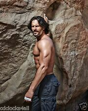 Joe Manganiello 8 x 10 GLOSSY Photo Picture IMAGE #3