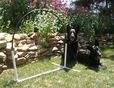 2 Dog Agility Equipment NADAC Hoopers Arched Hoops  Hoop