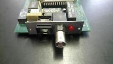 Acorn Risc PC y A7000/10b2&T + ANT Ethernet Tarjeta de interfaz de red (NIC)