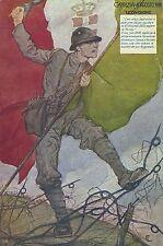 WWI - 12° DIVISIONE (BRIGATA CASALE/BRIGATA PAVIA) - GORIZIA 1916