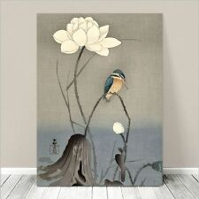"Beautiful Japanese Bird Art ~ CANVAS PRINT 8x10"" ~ Kingfisher & Lotus Flower"