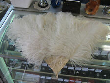 VINTAGE  BONE AND OSTRICH FEATHER FAN 1900's