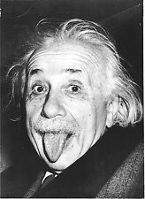"2.5x3.5"" ALBERT EINSTEIN FUNNY FACE Sticker / decal. Laptop computer genius math"