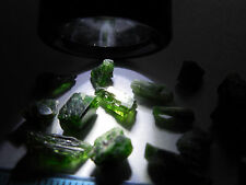 19pc RARE NATURAL ROUGH CHROME GREEN DIOPSIDE CRYSTALS 4.5g Skardu Pakistan #13