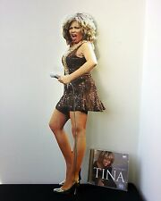 Tina Turner Display Stand Standee NEW The Best Private Dancer Addicted to Love