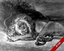 LION FIGHTING SNAKE ANIMAL SKETCH AESOP STORY PAINTING PET ART REAL CANVAS PRINT