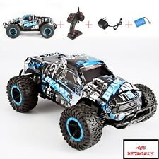 Speed Racing Cheetah King Radio Control Car 1/16 2.4G 2CH 20Km/H