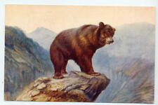 circa 1957 Postcard J Salmon - Bear on Mountain Peak - used but stamp removed