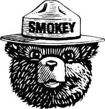 "Smokey the Bear Fire Fighting Bumper Sticker 5"" x 5"""