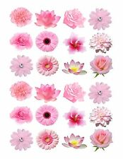 24 icing fairy cake toppers decorations edible Mixed light pink Flowers ND1