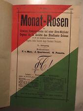 Schweiz - Studentenverein - 1906 - Monat-Rosen - 50. Jahrgang / Studentika