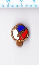 Vintage enamel Czech Republic buttonhole lapel badge Hammer & Feather