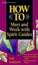 How to Meet & Work with Spirit Guides (Llewellyn's How to)