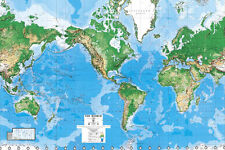 "Environmental Graphics C810 World Map Wall Mural - 8'8""x13'0"""