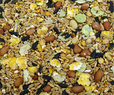 20 Kg Bulk Sack Wild Bird Winter Food Seed - Buy in Bulk and Save!