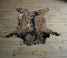 Large GOAT skin,rug,fur,pelt,hides,taxidermy 100% Nnatural 115 cm x 85 cm NEW