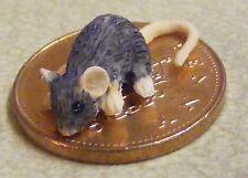 1:12 scala casa delle bambole miniatura in resina nera del Mouse Animale Domestico Accessorio D