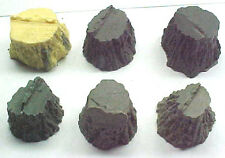 Stumps Assortment #5 cast resin All Scales see chartO,S,HO,HOn3 logging scenery