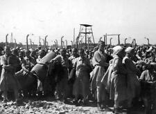 Photo. WW2. Prisoners in Nazi German Concentration Camp after initial Selection