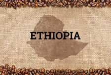 5 lbs Ethiopian Natural Sidamo Grade 4 Guji Natural Light Roast Coffee Beans