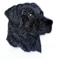 DOGS -  BLACK LABRADOR RETREIVER - PETS/ Iron On Embroidered Applique Patch