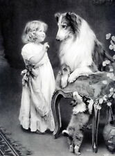 8x10 Print You Must Listen Victorian Girl Teaching Collie Dog Lessons on Puppies