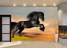 Black a Horse on the Hill Wall Mural  Photo Wallpaper GIANT WALL DECOR FREE GLUE