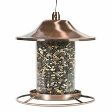 Perky Pet Bird Feeder Garden Fowl Seed Food Dispenser Birdfeeder Circular Perch