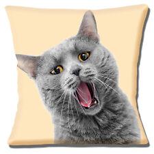 """FUNNY Grigio Gatto faccia chiudere gli occhi AMBRA British Shorthair 16"""" CUSCINO COVER"""