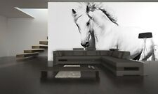 Photo Wallpaper WHITE HORSE Wall Mural MUSTANG 366x254cm GIANT WALL DECORATION