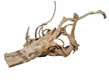 Aquarium drift wood planted tank |driftwood moss mopel boiled bog tree plant|