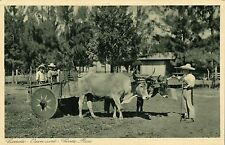costa rica, Carreta, Oxen Cart (1920s) Gran Hotel Edition