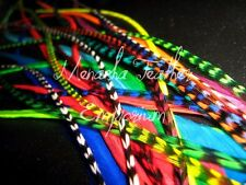 Feather hair extensions Natural grizzly Red Aqua Bright Rainbow colors mix 20
