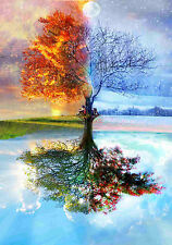 Large Framed Print - Summer Winter Autumn Spring Tree (Picture Poster Weather Ar