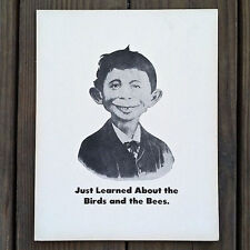 Vintage Original ALFRED E. NEUMAN BIRDS BEES Comical Black White Sign NOS Old