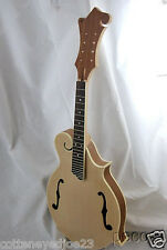 SOLID KENTUCKY STYLE LUITHIER DO IT YOURSELF ACOUSTIC  F-MODEL  MANDOLIN
