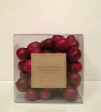POTTERY BARN Cranberries Decorative Vase Filler Christmas Decoration
