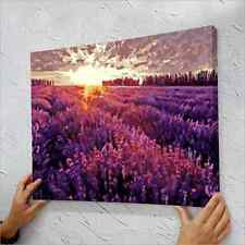 """16"""" x 20"""" DIY Paint By Number Kit Oil Painting On Canvas - Provence"""