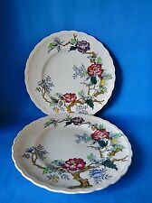 TWO WOODS WOOD & SONS ASHBOURNE 9 INCH PLATES