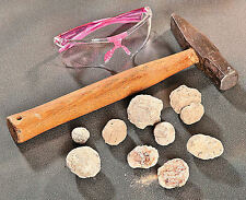 Break Your Own Geodes - Unbroken Lot - Educational Geology Science Kit - NEW